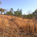 Hunting Habitat 2, Anderson Creek