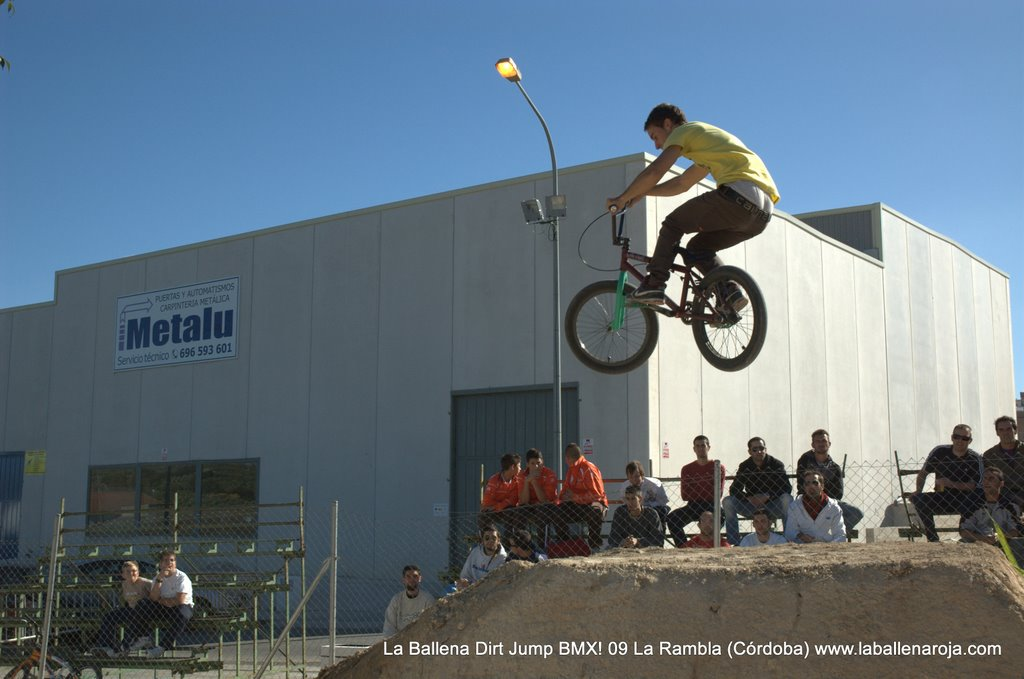 Ballena Dirt Jump BMX 2009 - BMX_09_0048.jpg