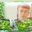 Ilqar Sadıqov's profile photo