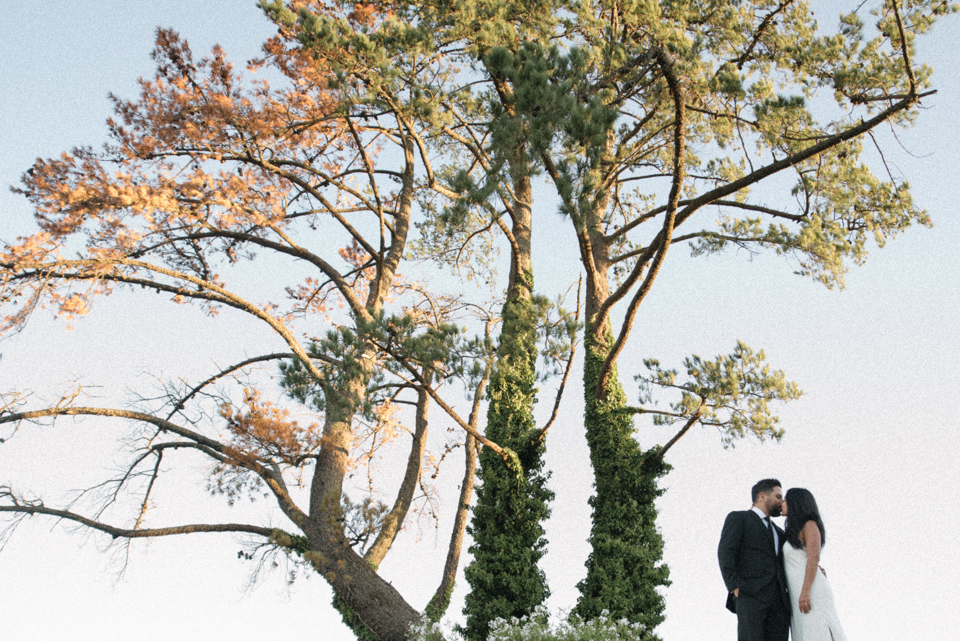 Grace and Alfonso wedding Clouds Estate Stellenbosch South Africa shot by dna photographers 779.jpg