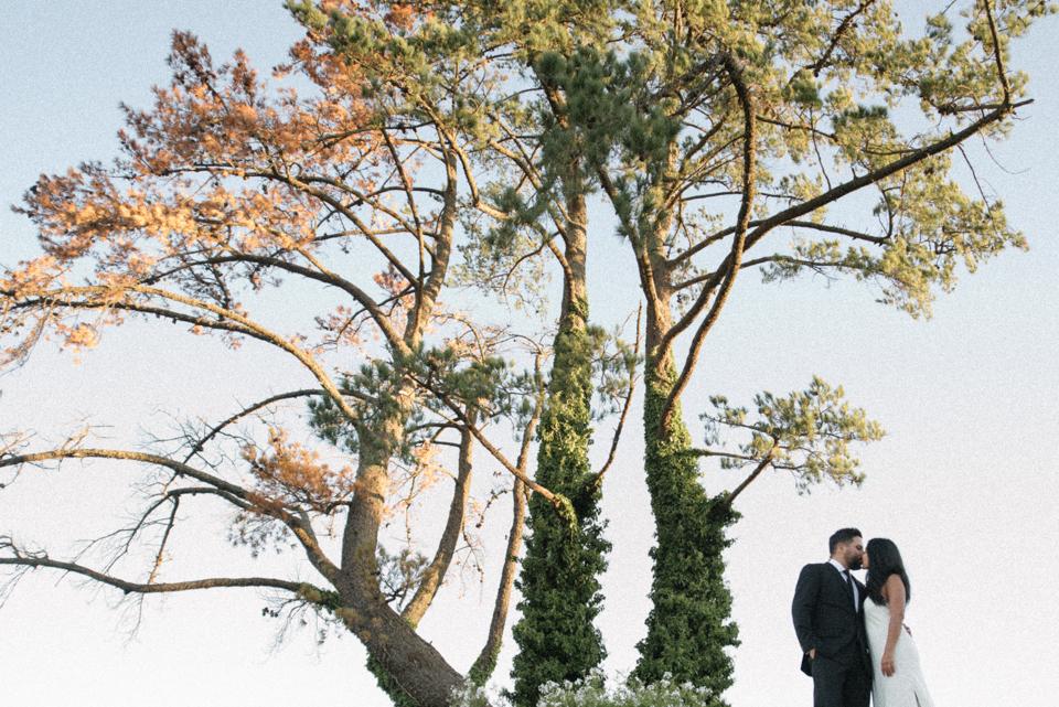 Grace and Alfonso wedding Clouds Estate Stellenbosch South Africa shot by dna photographers 779.jpg