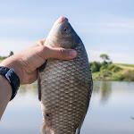 20160612_Fishing_Pryvitiv_062.jpg