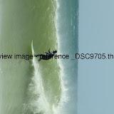 _DSC9705.thumb.jpg