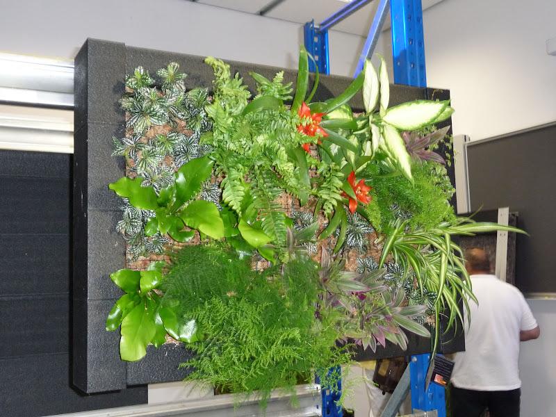 formación en jardinería vertical curso jornada intensivo jardín vertical green wall charla