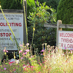 Vancouver - unser erster Campground