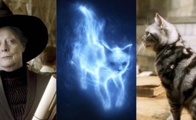 Harry Potter: Se seu Signo é Libra confira os Patronos que combinam com você