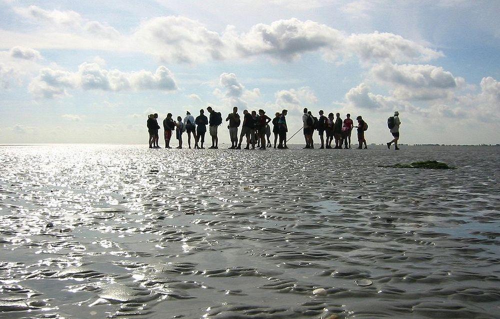 wadden-sea-hiking-2