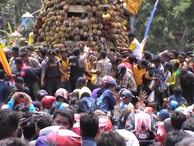 Ricuh, Ribuan Massa Saling Dorong Berebut Tumpeng Durian