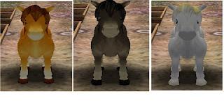 salah satu binatang yang sangat penting untuk didapatkan yakni Kuda Cara Mendapatkan Kuda Sesuai Warna Yang Kita Inginkan di HM AWL