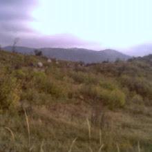 Jesenovanje, Črni Dol - photo18.jpg