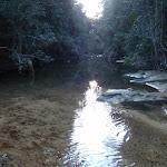 Reflections on Popran creek (162100)