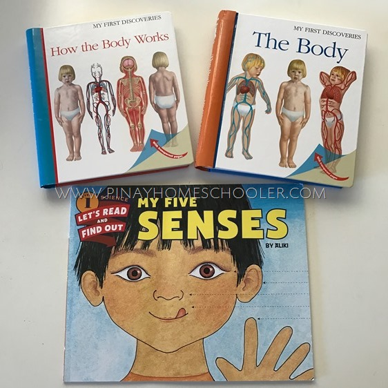 Books used in our Human Body Activity