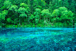 This park is called Jiuzhaigou 九寨沟 and can be found in the beautiful Sichuan Province. From here West is where Wild China really opens up.