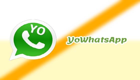 تعرف على تطبيق يو واتساب YoWhatsApp اخر اصدار 2021