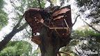 木にまとわり付くように建てたいとおもいつつ、釘やボルトを出来るだけ減らすにはどうすればいいかの結果がこれです。 実は、3本打ちました。 「ケアキ君、これでなんとか、頑張ってくれないか」 と何度も相談しました。