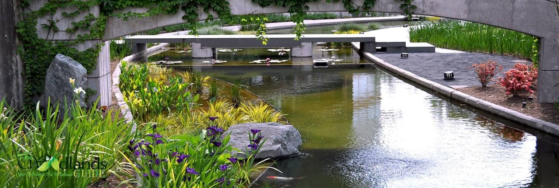 Koi Gardens along The Woodlands Waterway Millennium Mew Park