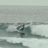 _DSC2314.thumb.jpg