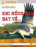 Khi Hồng Hạc Bay Về
