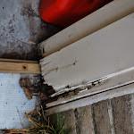 Rotten Door Frame Replacement