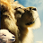 LordSunrunner avatar image