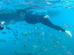pulau harapan, 6-7 juni 2015 samsung gopro be 21