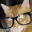 Eddy Maciel's profile photo