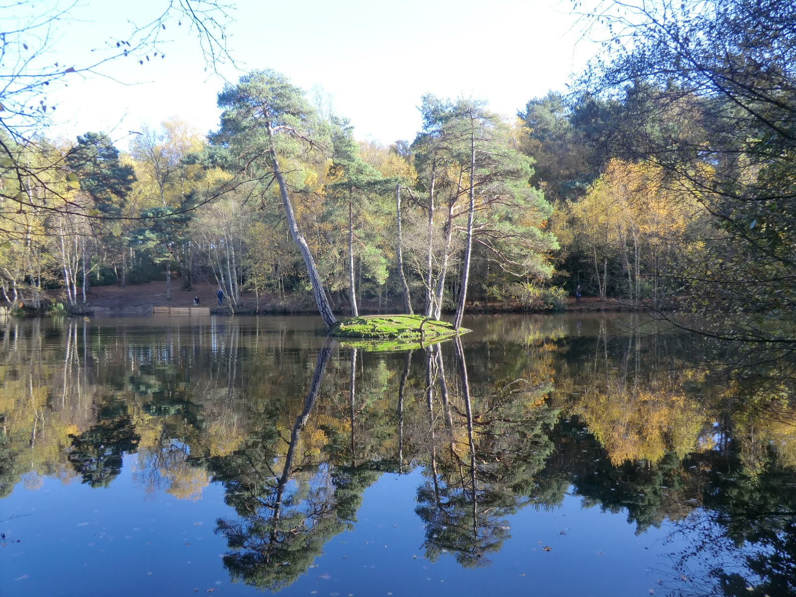 CIMG4927 Heath Pond