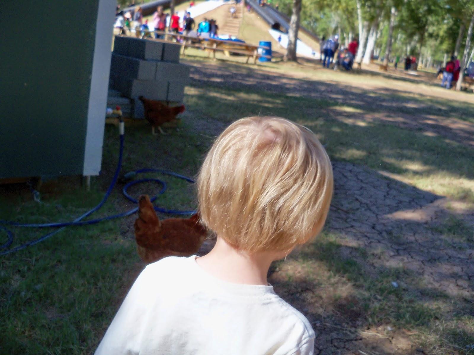 Blessington Farms - 116_5083.JPG