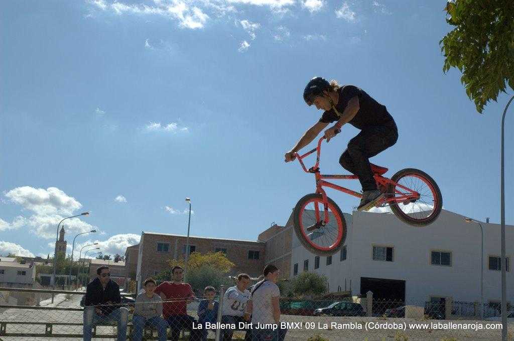 Ballena Dirt Jump BMX 2009 - BMX_09_0020.jpg