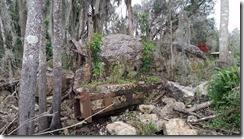 Bascule bridge remains