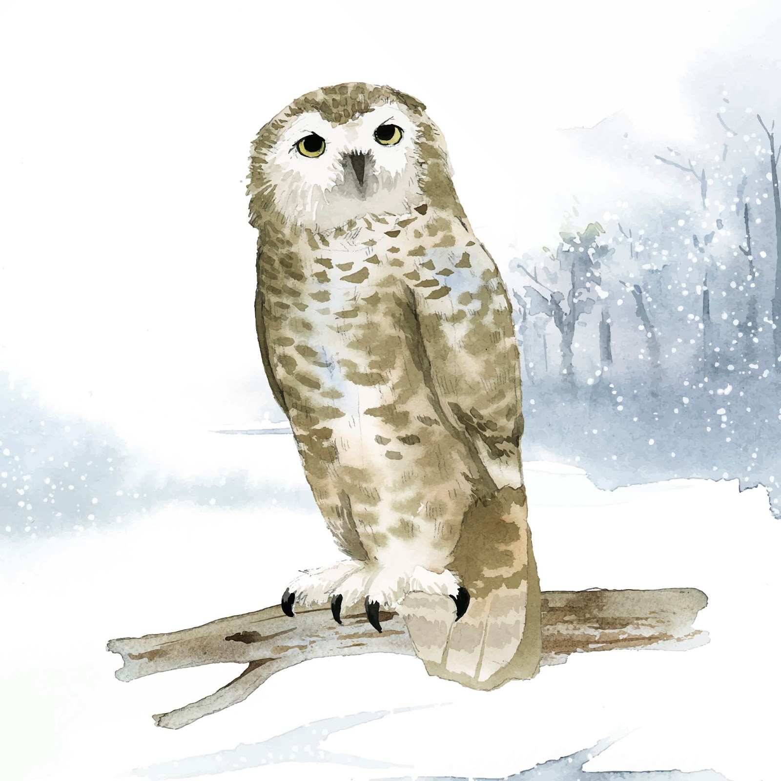 Snowy Owl Winter Watercolor Style Vector Free Download Vector CDR, AI, EPS and PNG Formats