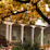 Multnomah University's profile photo