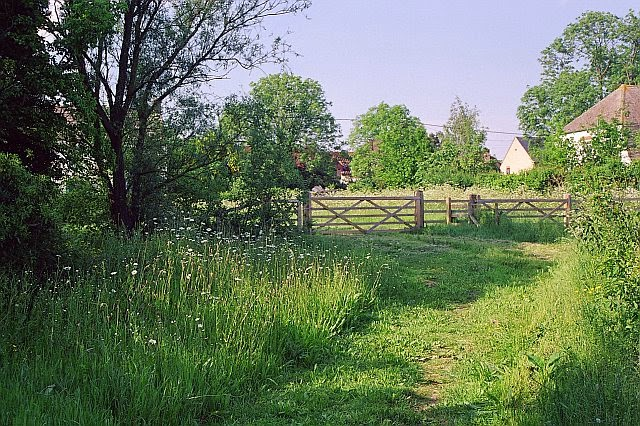 Grassfield Footpath - Hedge Planting - 6290928510233_0_BG.jpg