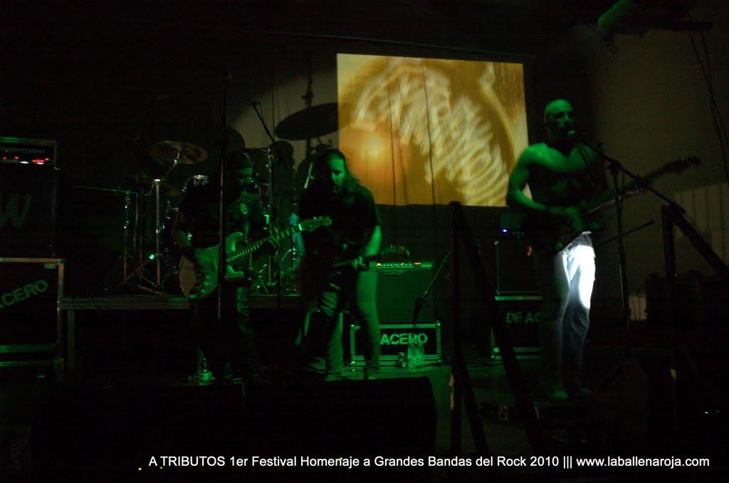 A TRIBUTOS 1er Festival Homenaje a Grandes Bandas del Rock 2010 - DSC_0154.jpg