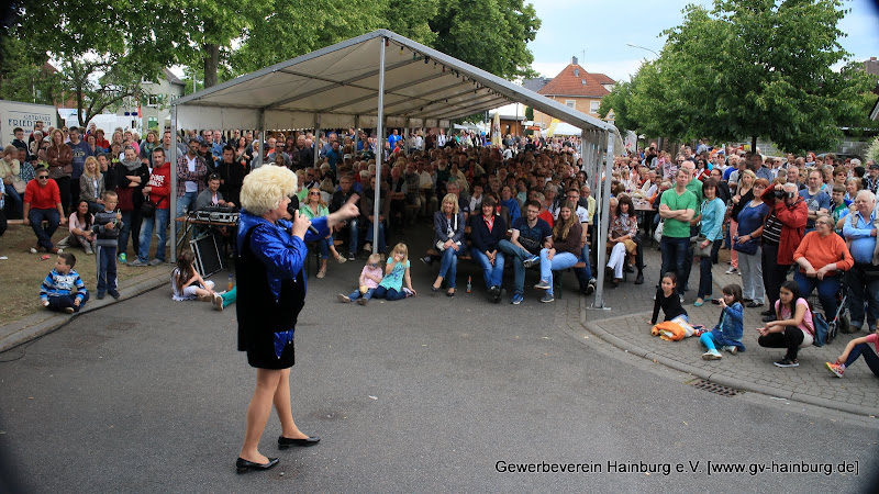 Olga Orange am Hainburger Markt 2015