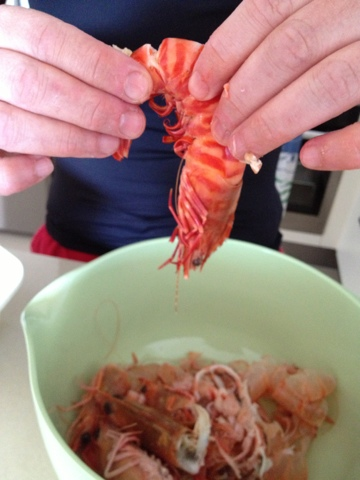 Blogging from the beach, Natasha in Oz, Prawn image