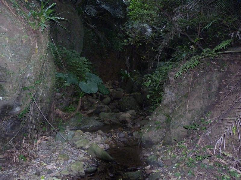 TAIWAN Daxi . Randonnée Taoyan valley - P1260085.JPG