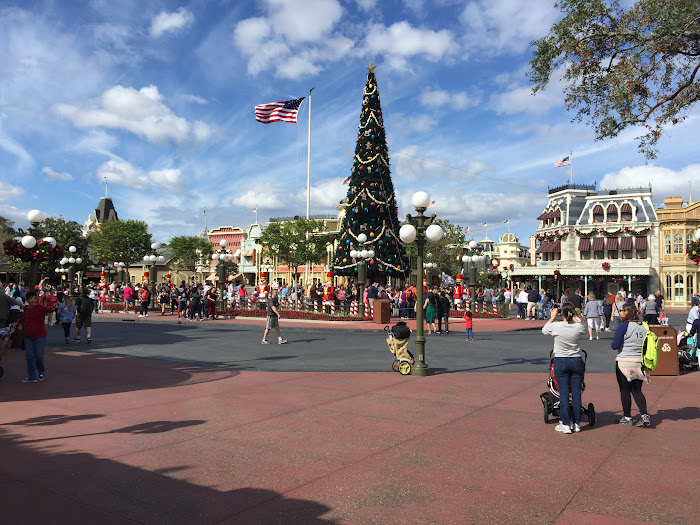 Magic kingdom Thanksgiving week crowds