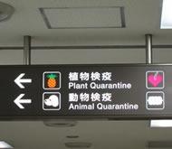 kiểm dịch động thực vật sân bay narita