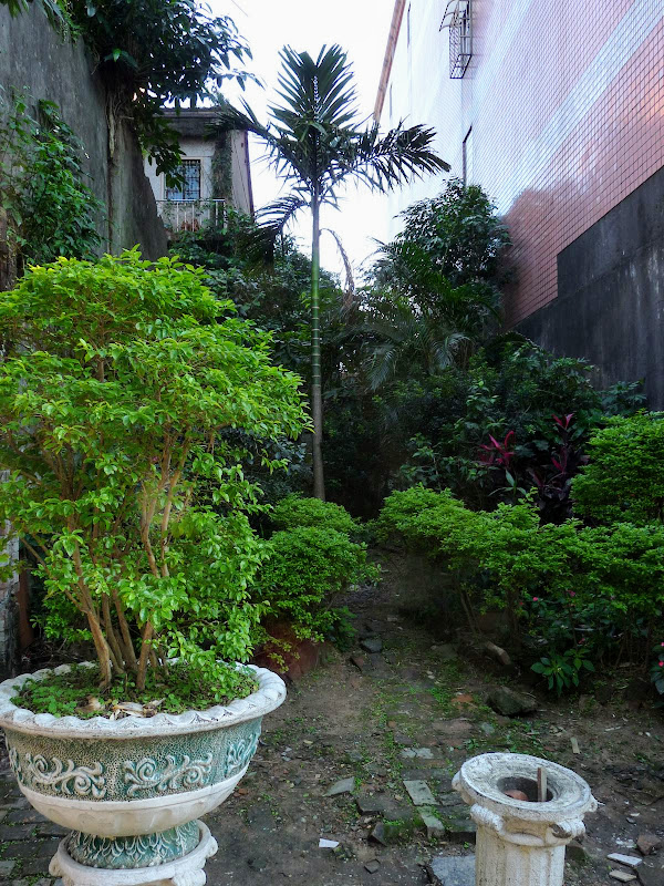 TAIWAN : Xizhi .Découverte du quartier - P1060511.JPG