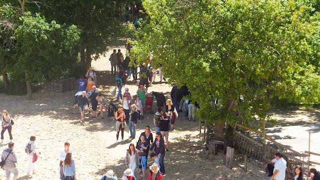 Pyla, Gran Duna de Pilat, Arcachon, Francia, Elisa N, Blog de Viajes, Lifestyle, Travel