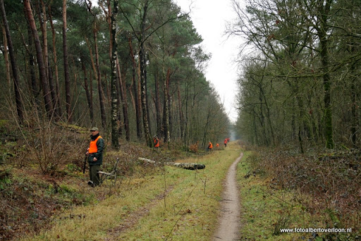 vossenjacht in de Bossen van overloon 18-02-2012 (11).JPG