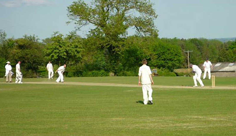 Cricket50RA-Wooton