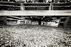 under_tunnel.jpg