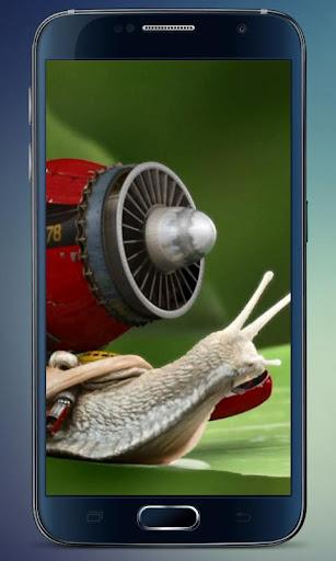 Turbojet Snail Live Wallpaper