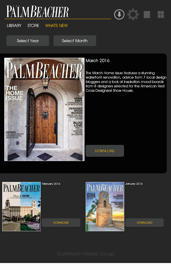 The Palm Beacher- screenshot
