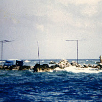 79 barque canada reef.jpg