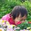 Blomsterne dufter dejligt