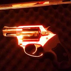 Carter Shooting Supply's profile photo
