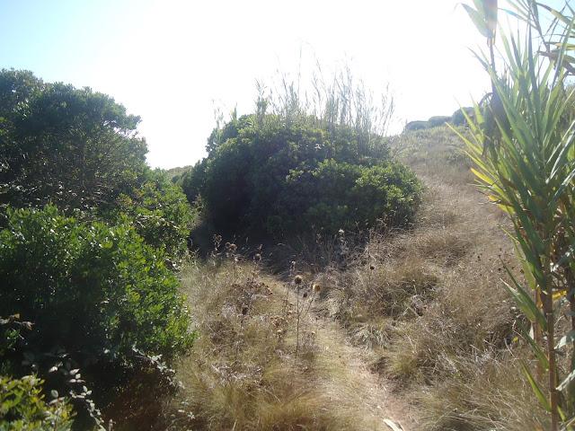 "Por ""Terras"" de Alcobaça   DSC03224"